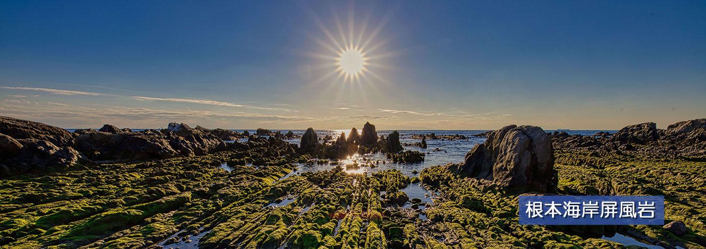 根本海岸屏風岩